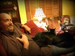 Steve and the real cats, bonding.
